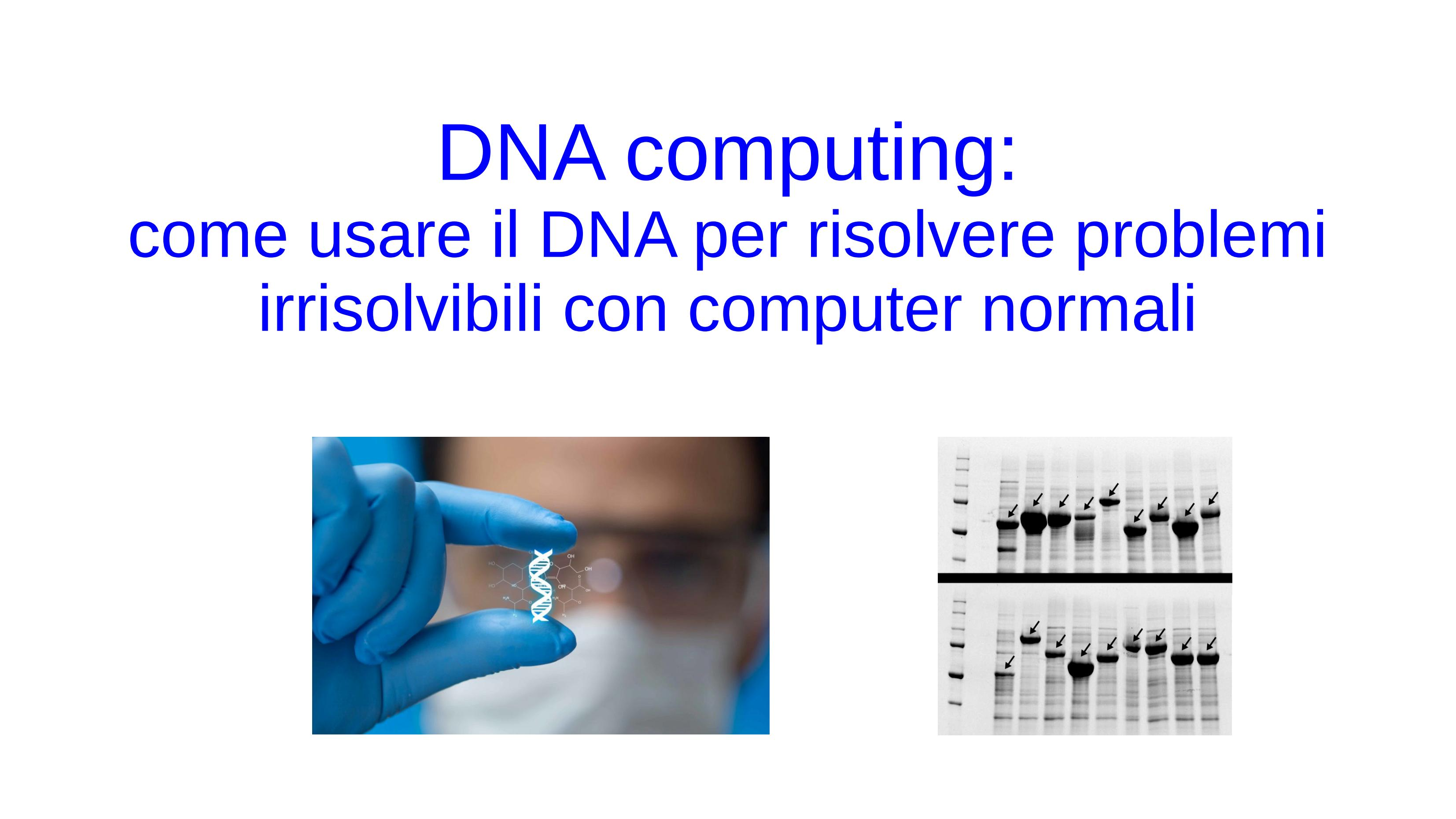 DNA_computing_Lions_01